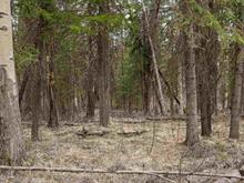 Lot for sale in Deka/Sulphurous/Hathaway Lakes, Deka Lake / Sulphurous / Hathaway Lakes, 100 Mile House, Lot 279 Paterson Road, 262394628 | Realtylink.org