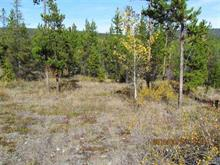 Lot for sale in Williams Lake - Rural West, Williams Lake, Williams Lake, Block B W Puntziville, 262391552 | Realtylink.org