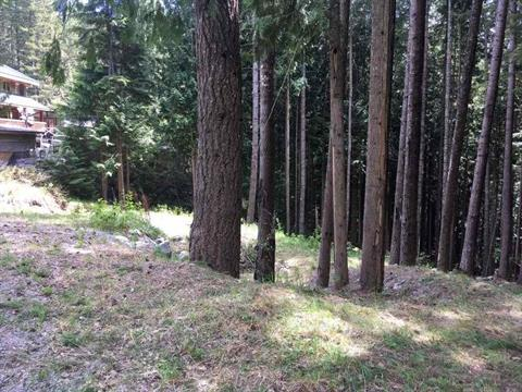 Lot for sale in Ring Creek, Squamish, Squamish, 1304 Ring Creek Road, 262388887 | Realtylink.org