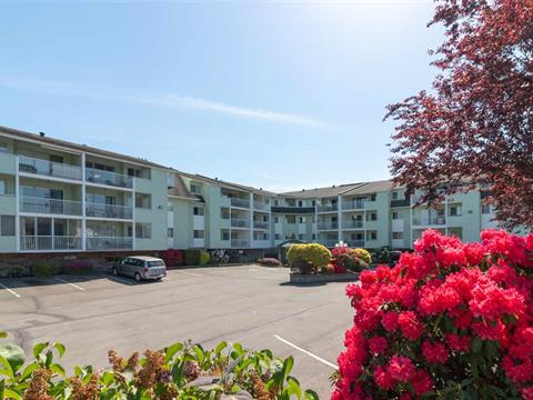 Apartment for sale in Abbotsford West, Abbotsford, Abbotsford, 115 31850 Union Avenue, 262388615 | Realtylink.org