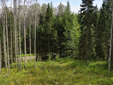 Lot for sale in Bridge Lake/Sheridan Lake, Bridge Lake, 100 Mile House, Lot A Greenall Road, 262394405 | Realtylink.org