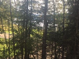 Lot for sale in Wells/Barkerville, Wells, Quesnel, Lot 1 Bowron Lake Road, 262421100 | Realtylink.org