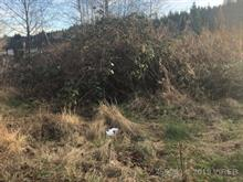 Lot for sale in Port Hardy, Port Hardy, 9525 Scott Street, 450089 | Realtylink.org