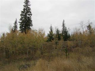 Lot for sale in 100 Mile House - Rural, 100 Mile House, 100 Mile House, Lot A Canim-Hendrix Lake Road, 262431679 | Realtylink.org