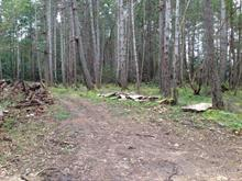 Lot for sale in Gabriola Island (Vancouver Island), Rosedale, Lt B Coast Road, 437776 | Realtylink.org