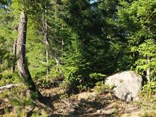 Lot for sale in Denman Island, Hope, 4001 Park Road, 437896 | Realtylink.org