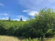 Lot for sale in Ucluelet, Salmon Beach, 1182 5th Ave, 461378 | Realtylink.org