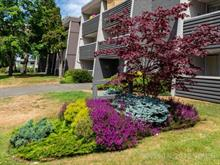 Apartment for sale in Campbell River, Burnaby East, 377 Dogwood Street, 460560 | Realtylink.org