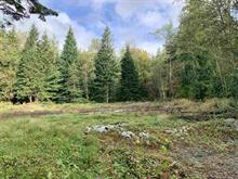 Lot for sale in Stave Falls, Mission, Mission, Lot 2 30331 Berg Avenue, 262418296 | Realtylink.org