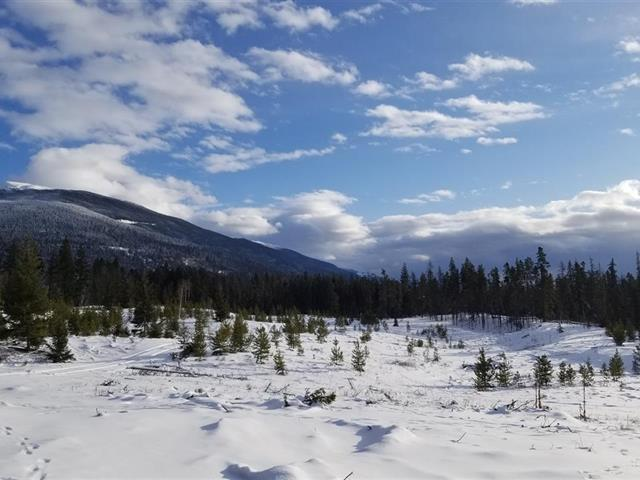 Lot for sale in Valemount - Rural West, Valemount, Robson Valley, Lot 1 N 5 Highway, 262446224 | Realtylink.org