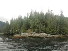 Lot for sale in Tofino, PG Rural South,  Fortune Channel, 457098 | Realtylink.org
