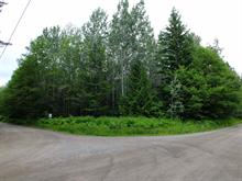 Lot for sale in Terrace - City, Terrace, Terrace, 4411 Thomas Street, 262400704 | Realtylink.org