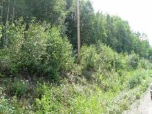 Lot for sale in McBride - Town, McBride, Robson Valley, Dl 11663 Mountain View Road, 262419491 | Realtylink.org