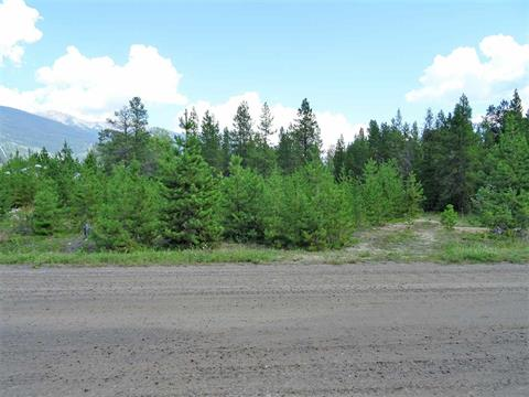 Lot for sale in Valemount - Town, Valemount, Robson Valley, 209 Dogwood Street, 262419157 | Realtylink.org