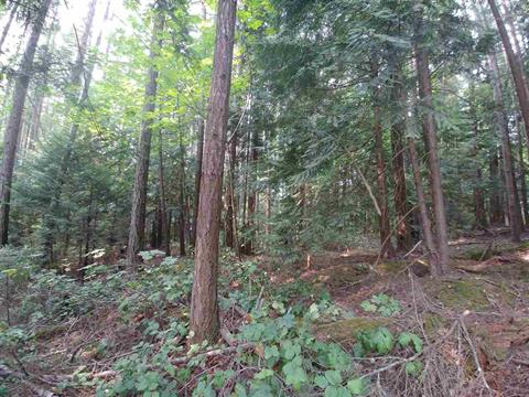 Lot for sale in Pender Island, Islands-Van. & Gulf, Lot A Razor Point Road, 262404883   Realtylink.org