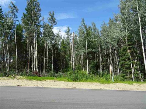 Lot for sale in Valemount - Town, Valemount, Robson Valley, 1010 18th Avenue, 262385936 | Realtylink.org