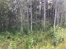 Lot for sale in Salmon Valley, Prince George, PG Rural North, 4500 Salmon Valley Road, 262417722 | Realtylink.org