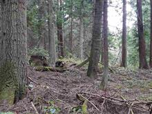 Lot for sale in Galiano Island, Islands-Van. & Gulf, 150 Rainsford Road, 262416660 | Realtylink.org
