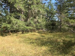 Lot for sale in Gabriola Island (Vancouver Island), Rosedale, Lot 119 Pinewood Road, 459236 | Realtylink.org