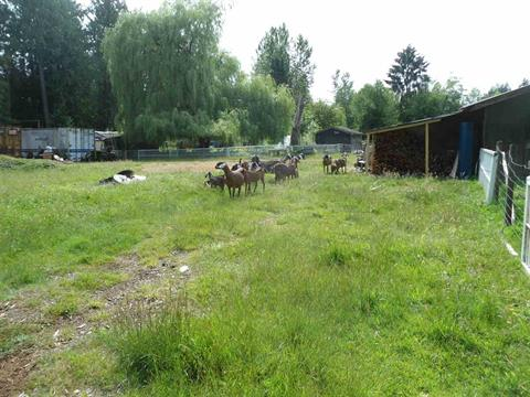 House for sale in County Line Glen Valley, Langley, Langley, 26215 84 Avenue, 262415423   Realtylink.org