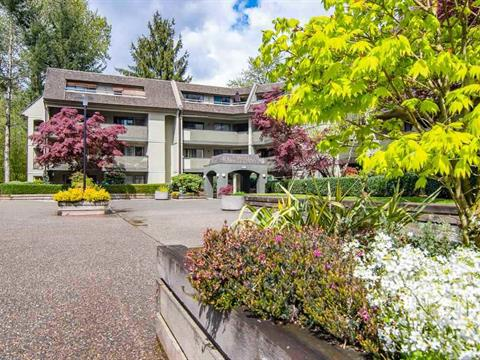 Apartment for sale in North Coquitlam, Coquitlam, Coquitlam, 417 1210 Pacific Street, 262408848 | Realtylink.org