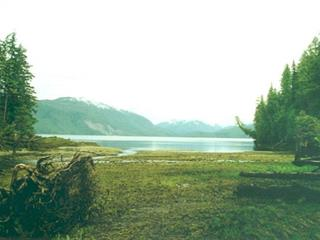 Lot for sale in Bella Coola/Hagensborg, Bella Coola, Williams Lake, Dl 19 Rivers Inlet, 262464302 | Realtylink.org