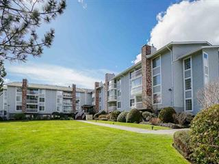 Apartment for sale in Langley City, Langley, Langley, 102 5379 205 Street, 262469182   Realtylink.org