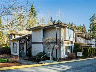 Townhouse for sale in Poplar, Abbotsford, Abbotsford, 103 1750 McKenzie Road, 262466917 | Realtylink.org