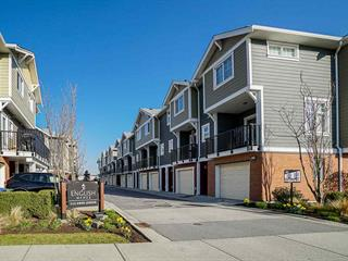 Townhouse for sale in Queensborough, New Westminster, New Westminster, 41 1111 Ewen Avenue, 262469211   Realtylink.org