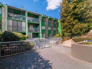 Apartment for sale in Government Road, Burnaby, Burnaby North, 204 3901 Carrigan Court, 262471520 | Realtylink.org