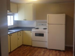 House for sale in South Fort George, Prince George, PG City Central, 1355 Lasalle Avenue, 262448693   Realtylink.org