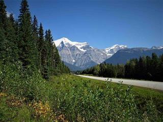 House for sale in Valemount - Rural West, Valemount, Robson Valley, 14081 Howard Road, 262418258 | Realtylink.org