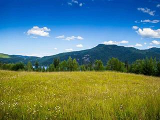 Lot for sale in Canim/Mahood Lake, Canim Lake, 100 Mile House, Lot 22 N Harriman Road, 262381879   Realtylink.org