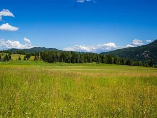Lot for sale in Canim/Mahood Lake, Canim Lake, 100 Mile House, Lot 10 N Harriman Road, 262395351   Realtylink.org