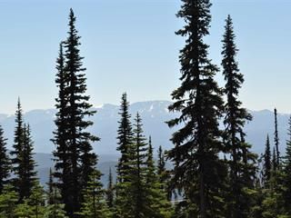 Lot for sale in Smithers - Rural, Smithers And Area, 154 Alpine Way, 262457360 | Realtylink.org