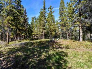 Lot for sale in Smithers - Rural, Smithers, Smithers And Area, 3205 Millar Road, 262386750 | Realtylink.org