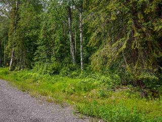 Lot for sale in Smithers - Rural, Smithers, Smithers And Area, 3 3000 Dahlie Road, 262301792 | Realtylink.org