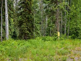 Lot for sale in Smithers - Rural, Smithers, Smithers And Area, 1 3000 Dahlie Road, 262301759 | Realtylink.org