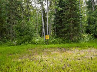 Lot for sale in Smithers - Rural, Smithers, Smithers And Area, 8 3000 Dahlie Road, 262302054 | Realtylink.org
