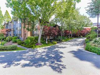 Apartment for sale in King George Corridor, Surrey, South Surrey White Rock, 210 15300 17 Avenue, 262457801 | Realtylink.org