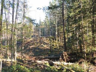 Lot for sale in Nanaimo, Cloverdale,  Tiesu Road, 465118 | Realtylink.org