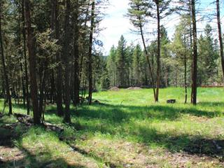 Lot for sale in 108 Ranch, 108 Mile Ranch, 100 Mile House, 4890 Gloinnzun Drive, 262280397 | Realtylink.org