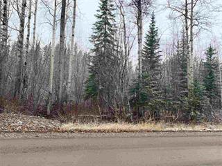 Lot for sale in Haldi, Prince George, PG City South, 9777 Birchill Crescent, 262439607   Realtylink.org