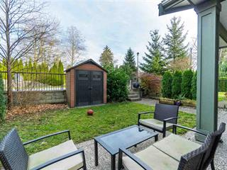 House for sale in Cottonwood MR, Maple Ridge, Maple Ridge, 102 23925 116 Avenue, 262455302 | Realtylink.org