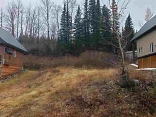 Lot for sale in Mackenzie - Rural, Mackenzie, Mackenzie, Lot 20 Northern Lights Way, 262436657 | Realtylink.org