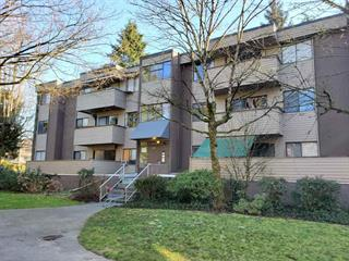 Apartment for sale in Central Pt Coquitlam, Port Coquitlam, Port Coquitlam, 3 2432 Wilson Avenue, 262457398   Realtylink.org