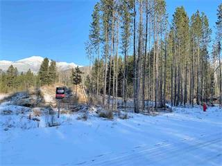 Lot for sale in Valemount - Town, Valemount, Robson Valley, 1050 18th Avenue, 262385946 | Realtylink.org