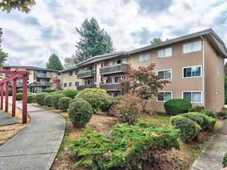 Apartment for sale in Capitol Hill BN, Burnaby, Burnaby North, 90 5820 Hastings Street, 262454274 | Realtylink.org