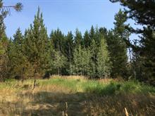 Lot for sale in Forest Grove, 100 Mile House, 4290 Wilcox Road, 262364107 | Realtylink.org