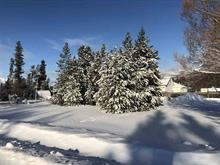Lot for sale in Valemount - Town, Valemount, Robson Valley, 1022 6th Avenue, 262449595 | Realtylink.org